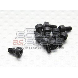 Hexagon socket head cap screws M2,5x5 (10pcs)