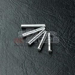 MST 2x13.8mm Pins (5)