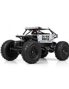 Slick Rock-Mini Losi